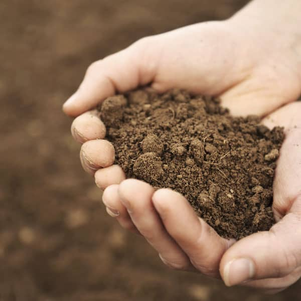 Agricenter Zevilla -  Mejoradores de suelo